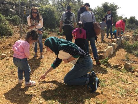 palestine-green